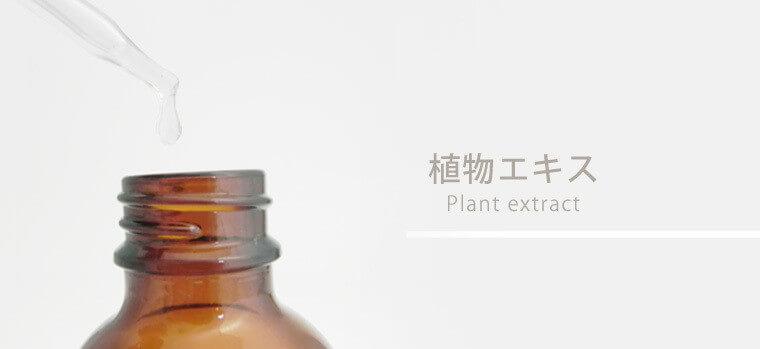 植物エキスとエッセンシャルオイル① ~その違いと利用について~
