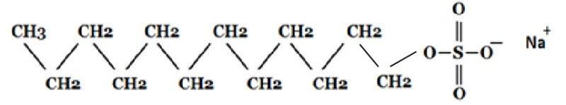 ラウリル硫酸Naについて
